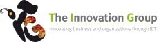 The Innovation Group: A Boutique Management Consulting
